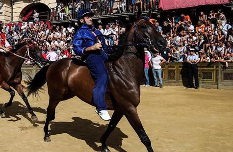 锡耶纳举行传统赛马节